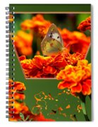 Butterfly In A Sea Of Orange Floral 02 Spiral Notebook