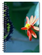 Butterfly In Flight Spiral Notebook