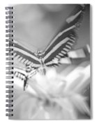 Butterfly In Motion #1961bw Spiral Notebook