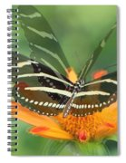 Butterfly In Motion #1967 Spiral Notebook
