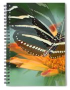 Butterfly In Motion #1968 Spiral Notebook
