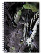 Butterfly In Violet Green And Black Spiral Notebook