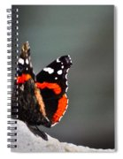 Butterfly Landing Spiral Notebook