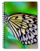 Butterfly On A Leaf Spiral Notebook