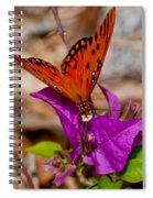 Butterfly On Bouganvilla Spiral Notebook