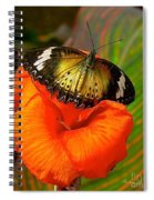Butterfly On Canna Flower Spiral Notebook