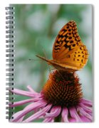 Butterfly On Cornflower Spiral Notebook