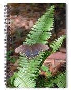 Butterfly On Fern Spiral Notebook