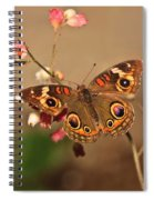Butterfly On Pink Spiral Notebook