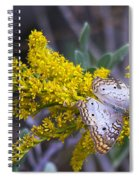 Butterfly On Yellow Spiral Notebook