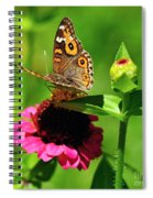 Butterfly On Zinnia Flower 2 Spiral Notebook