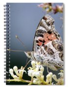 Butterfly - Painted Lady - Tasty Out Here Spiral Notebook