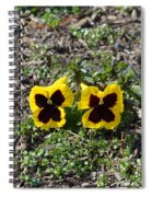 Butterfly Pansies Spiral Notebook