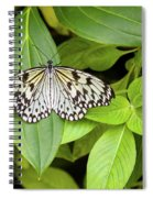 Butterfly Perching On Leaf In A Garden Spiral Notebook
