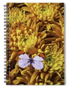 Butterfly Resting On Mums Spiral Notebook