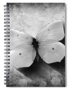 Butterfly 4 Spiral Notebook