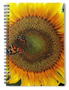 Butterfly Sunflower Spiral Notebook