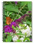 Butterfly Surprise Spiral Notebook