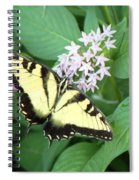 Butterfly - Swallowtail Spiral Notebook