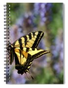 Butterfly Thoughts Spiral Notebook