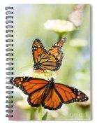 Butterfly Trio Spiral Notebook