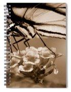 Butterfly Whisper Spiral Notebook