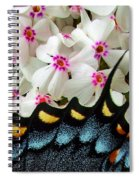 Butterfly Wing And Phlox Spiral Notebook