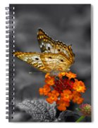 Butterfly Wings Of Sun Light Selective Coloring Black And White Digital Art Spiral Notebook