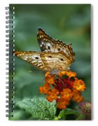 Butterfly Wings Of Sun Light Spiral Notebook