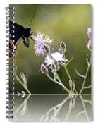 Butterfly With Reflection Spiral Notebook