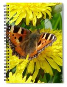 Butterfly Yellow Spiral Notebook