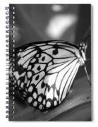 Butterfly7 Spiral Notebook
