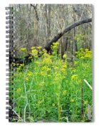 Butterweed Florida Wildflower Spiral Notebook