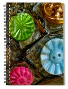 Button Biographies Spiral Notebook