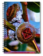 Pacific Northwest Washington Button Seed Pod Spiral Notebook