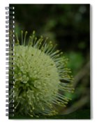 Buttonbush Spiral Notebook