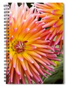 Buy Me Flowers Spiral Notebook