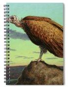 Buzzard Rock Spiral Notebook