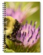 Buzzy Bee Spiral Notebook