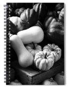 Bw Farm Market Acorn Butternut And Carnival Squash Michigan Usa Spiral Notebook