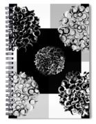 Bw Spreeze Spiral Notebook