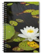 Bwca Water Lily Spiral Notebook