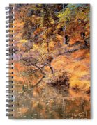 By The Bank Of The Golden Forest Spiral Notebook