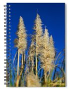 By The Sea By Diana Sainz Spiral Notebook