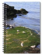 By The Shoreline Spiral Notebook