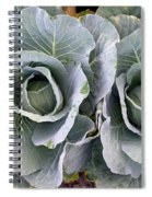 Cabbage Duo Spiral Notebook