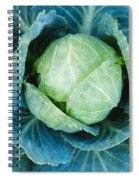 Cabbage Painterly Spiral Notebook