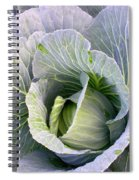 Cabbage Still Life Spiral Notebook