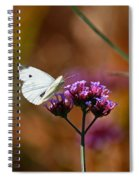 Cabbage White Butterfly In Fall Spiral Notebook