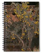 Cacti Along The Garden Wall Spiral Notebook
